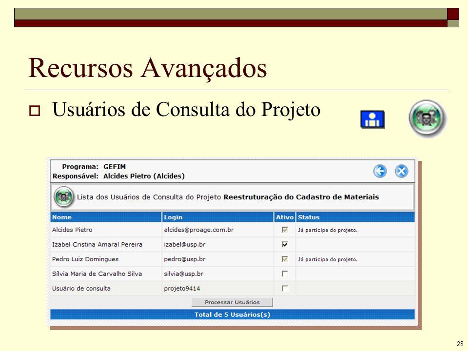28 Recursos Avançados Usuários de Consulta do Projeto