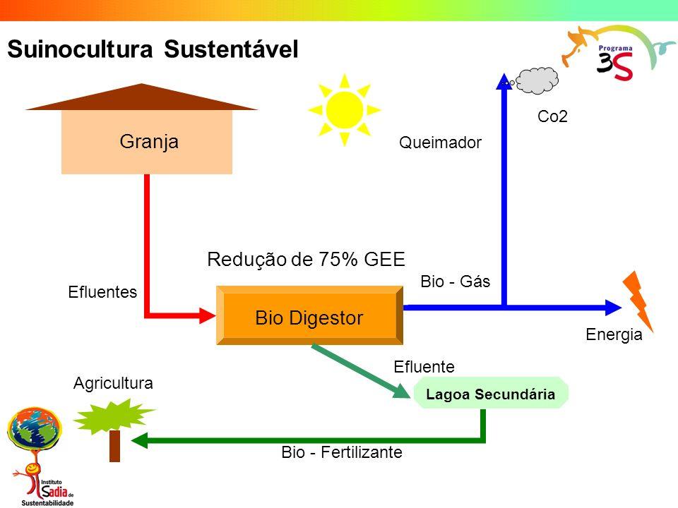 Suinocultura Sustentável Granja Bio Digestor Queimador Efluentes Bio - Gás Energia Bio - Fertilizante Co2 Lagoa Secundária Efluente Redução de 75% GEE