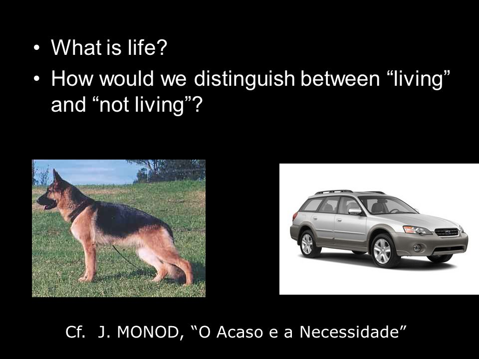 What is life. How would we distinguish between living and not living.
