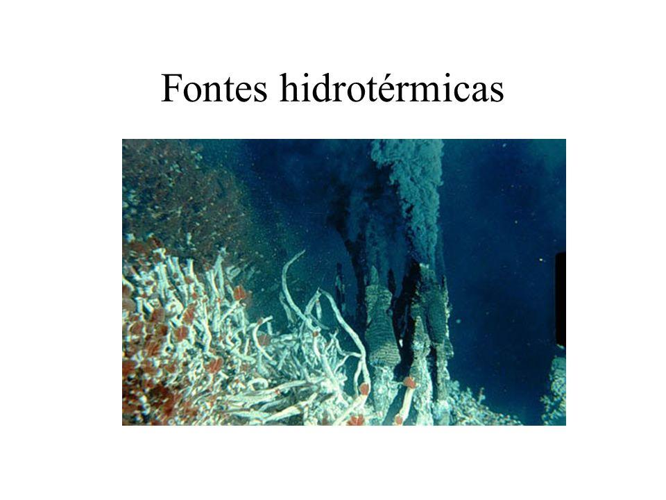 Fontes hidrotérmicas