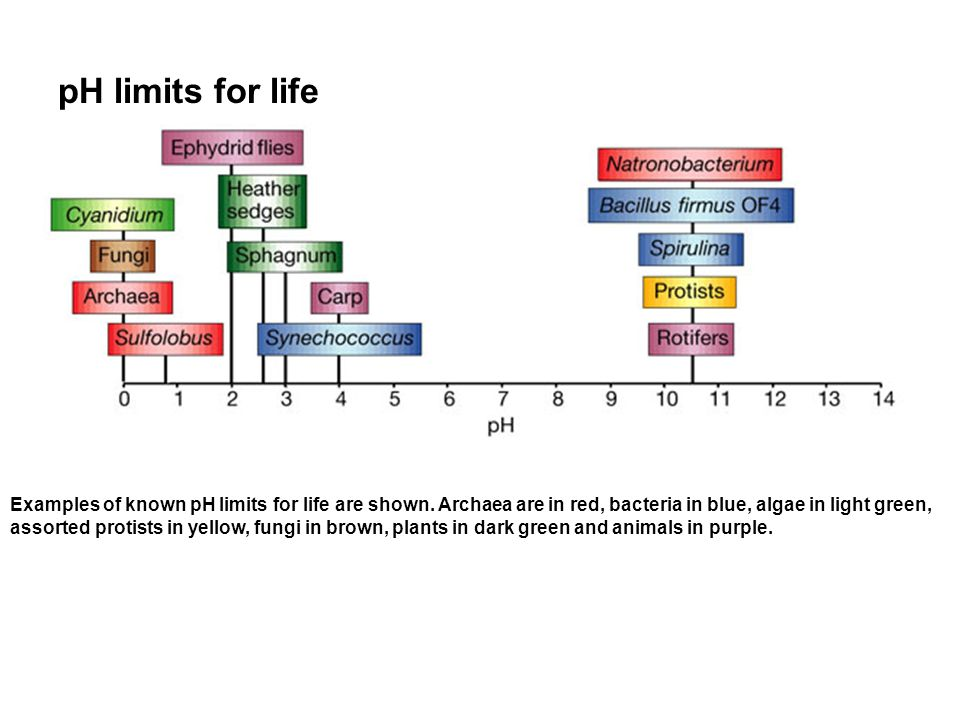 pH limits for life Examples of known pH limits for life are shown.