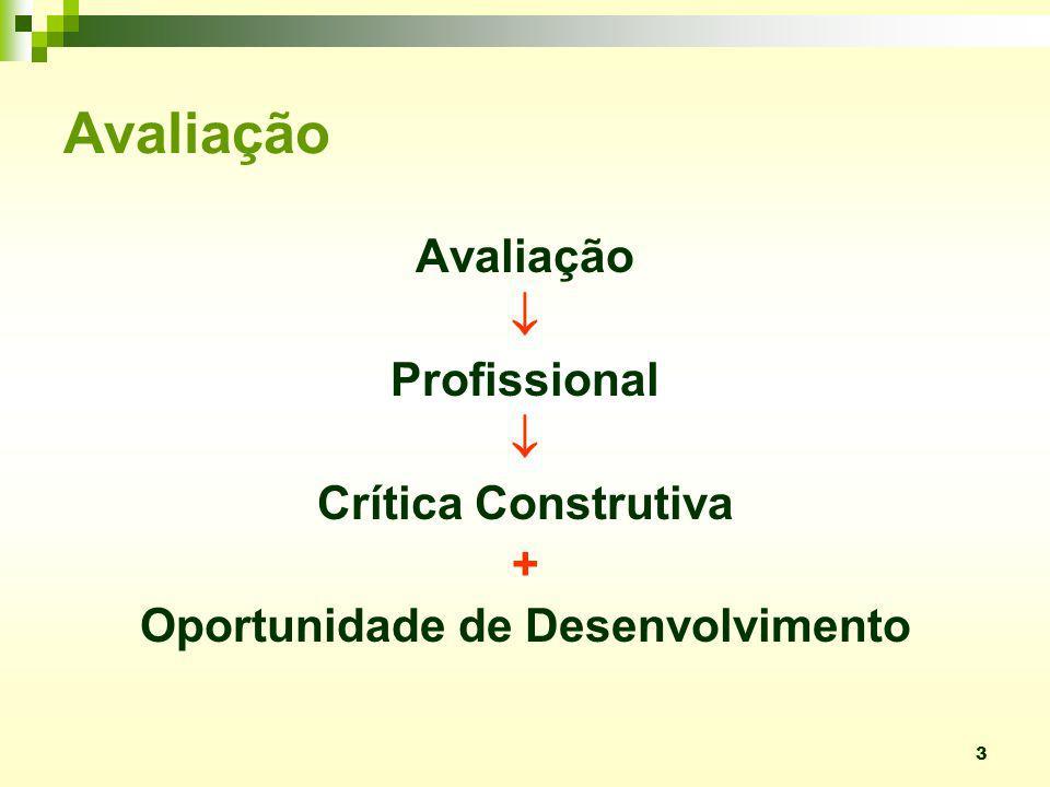 3 Avaliação Profissional Crítica Construtiva + Oportunidade de Desenvolvimento