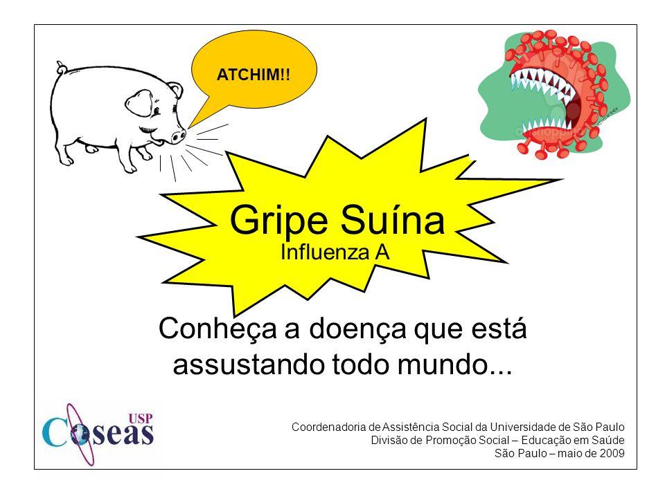 Influenza A Gripe Suína Conheça a doença que está assustando todo mundo... ATCHIM!! Coordenadoria de Assistência Social da Universidade de São Paulo D