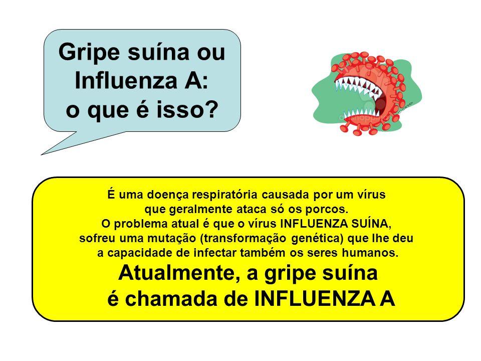 É uma doença respiratória causada por um vírus que geralmente ataca só os porcos. O problema atual é que o vírus INFLUENZA SUÍNA, sofreu uma mutação (