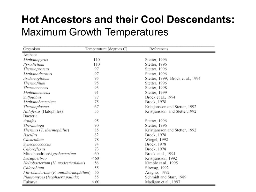 Hot Ancestors and their Cool Descendants: Maximum Growth Temperatures