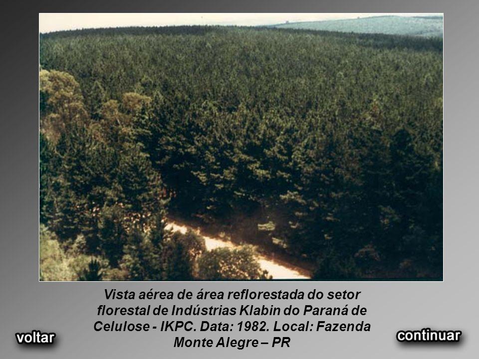 Vista aérea de área reflorestada do setor florestal de Indústrias Klabin do Paraná de Celulose - IKPC. Data: 1982. Local: Fazenda Monte Alegre – PR