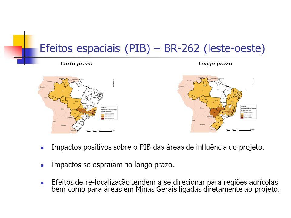 Efeitos espaciais (PIB) – BR-381 (norte-sul) A região Nordeste expande sua área de mercado em detrimento das regiões Sul e Sudeste, que sofrem com os efeitos de congestionamento na rede.