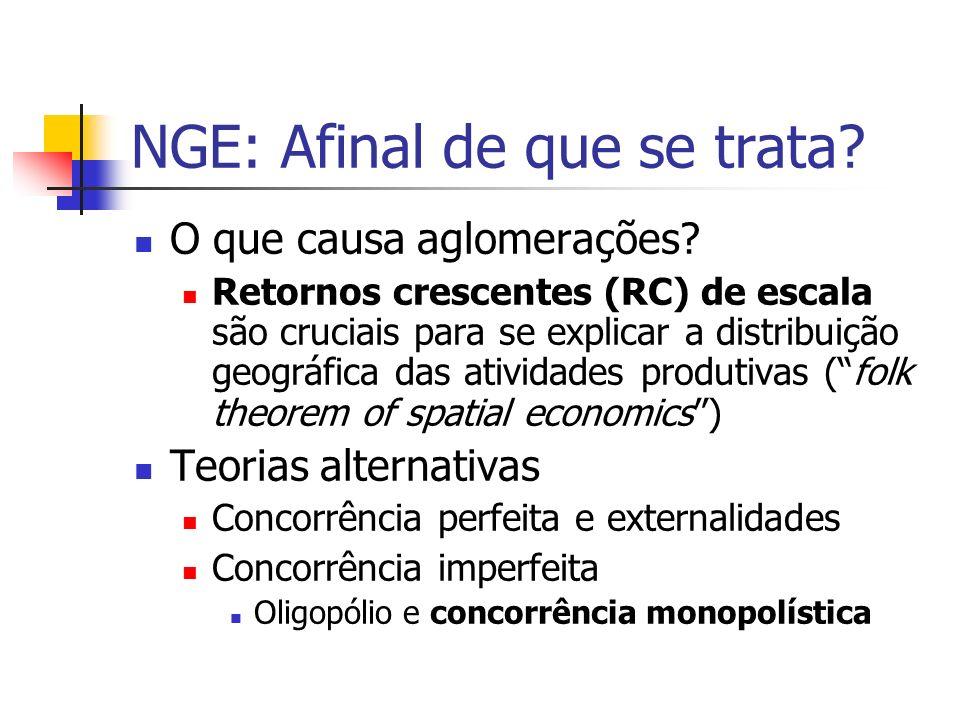 NGE: Afinal de que se trata.