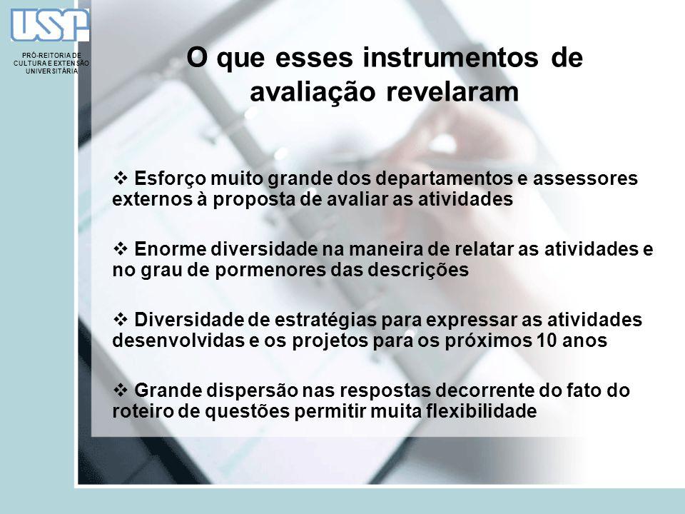 O que esses instrumentos de avaliação revelaram Esforço muito grande dos departamentos e assessores externos à proposta de avaliar as atividades Enorm
