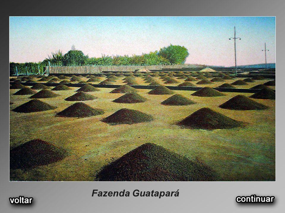 Fazenda Guatapará