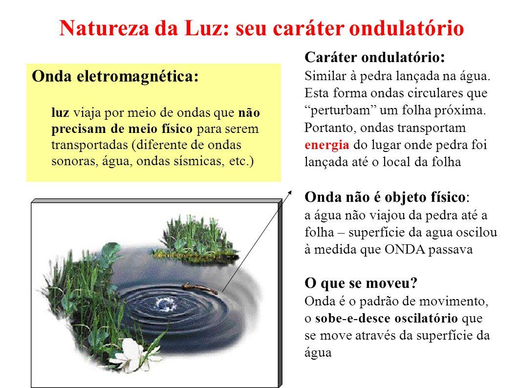 Natureza da Luz: seu caráter ondulatório Onda eletromagnética: luz viaja por meio de ondas que não precisam de meio físico para serem transportadas (d
