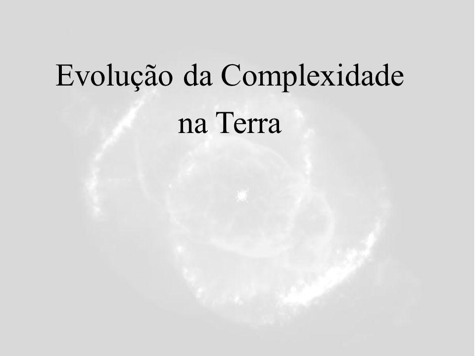 Evolução da Complexidade na Terra