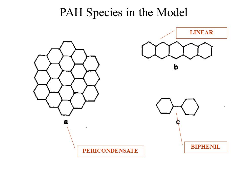 PAH Species in the Model LINEAR BIPHENIL PERICONDENSATE
