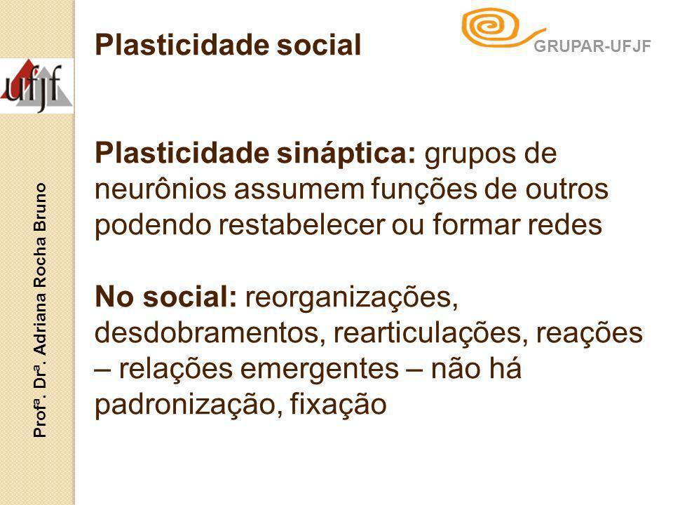 Plasticidade social Plasticidade sináptica: grupos de neurônios assumem funções de outros podendo restabelecer ou formar redes No social: reorganizaçõ