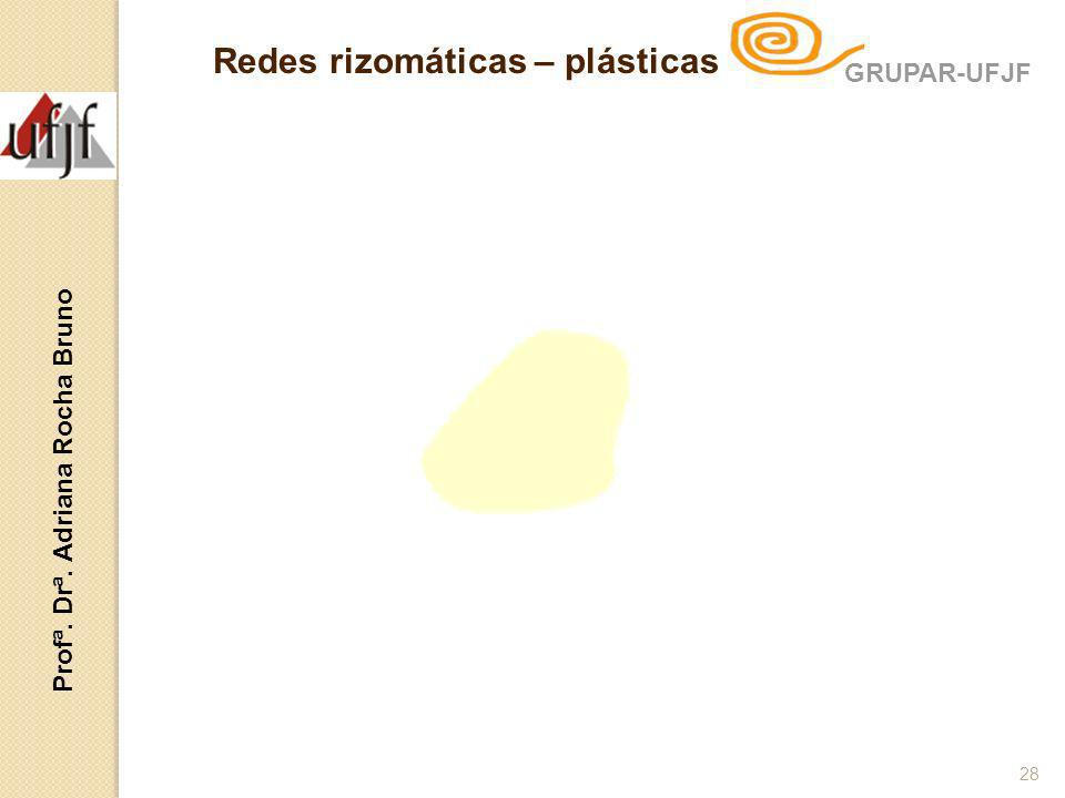 Redes rizomáticas – plásticas Profª. Drª. Adriana Rocha Bruno 28 GRUPAR-UFJF