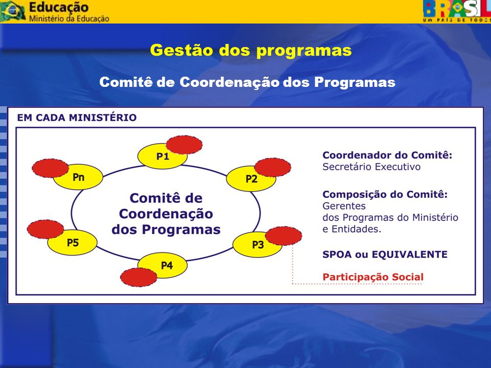 Comitê de Coordenação dos Programas Gestão dos programas
