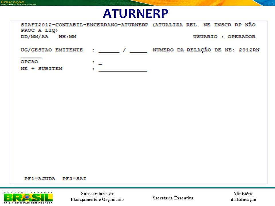 Ministério da Educação Subsecretaria de Planejamento e Orçamento Secretaria Executiva ATURNERP