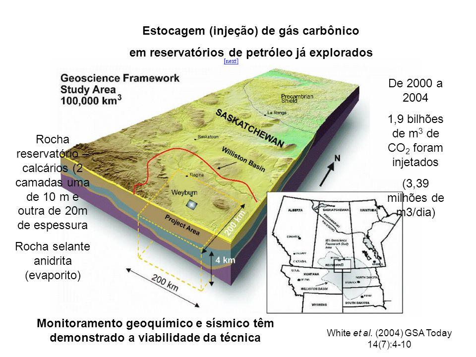 Estocagem (injeção) de gás carbônico em reservatórios de petróleo já explorados De 2000 a 2004 1,9 bilhões de m 3 de CO 2 foram injetados (3,39 milhões de m3/dia) Rocha reservatório – calcários (2 camadas uma de 10 m e outra de 20m de espessura Rocha selante anidrita (evaporito) Monitoramento geoquímico e sísmico têm demonstrado a viabilidade da técnica White et al.