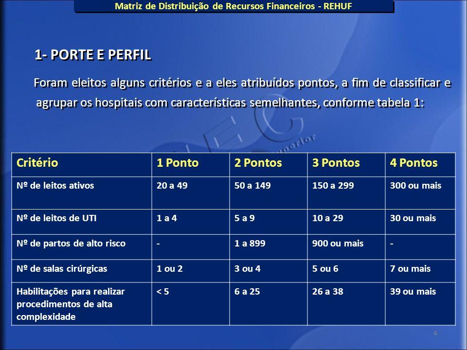 4 1- PORTE E PERFIL Foram eleitos alguns critérios e a eles atribuídos pontos, a fim de classificar e agrupar os hospitais com características semelha