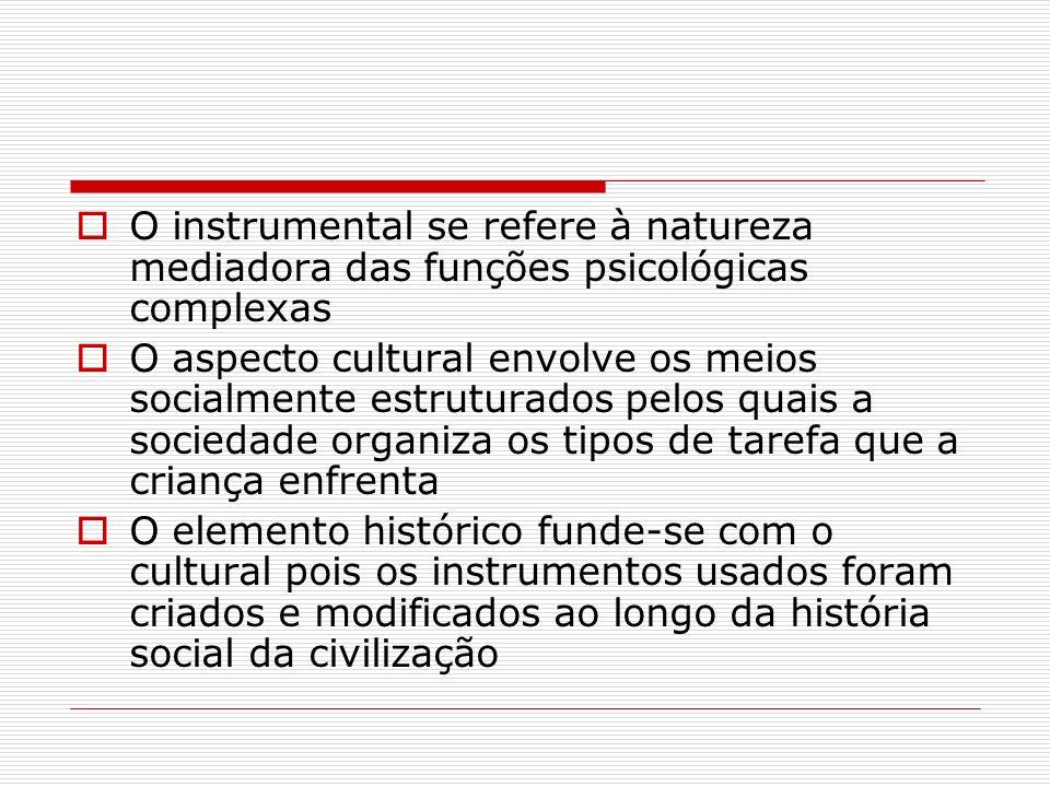 O instrumental se refere à natureza mediadora das funções psicológicas complexas O aspecto cultural envolve os meios socialmente estruturados pelos qu