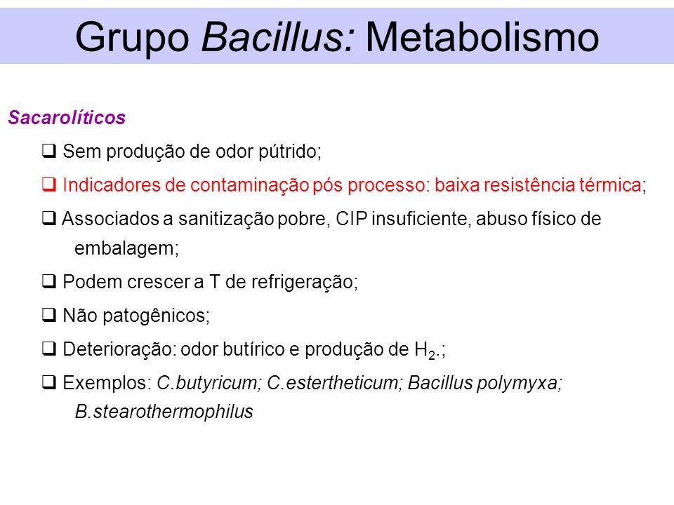 Grupo Bacillus: Metabolismo Sacarolíticos Sem produção de odor pútrido; Indicadores de contaminação pós processo: baixa resistência térmica; Associado
