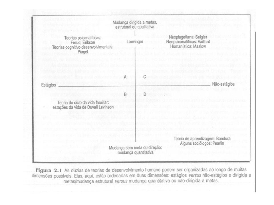 Acomodação Processo complementar que envolve a mudança do esquema como conseqüência da nova informação obtida por assimilação.