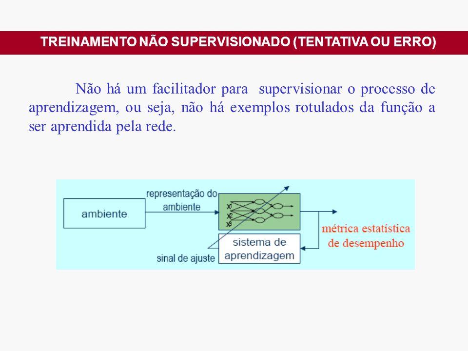 Não há um facilitador para supervisionar o processo de aprendizagem, ou seja, não há exemplos rotulados da função a ser aprendida pela rede.