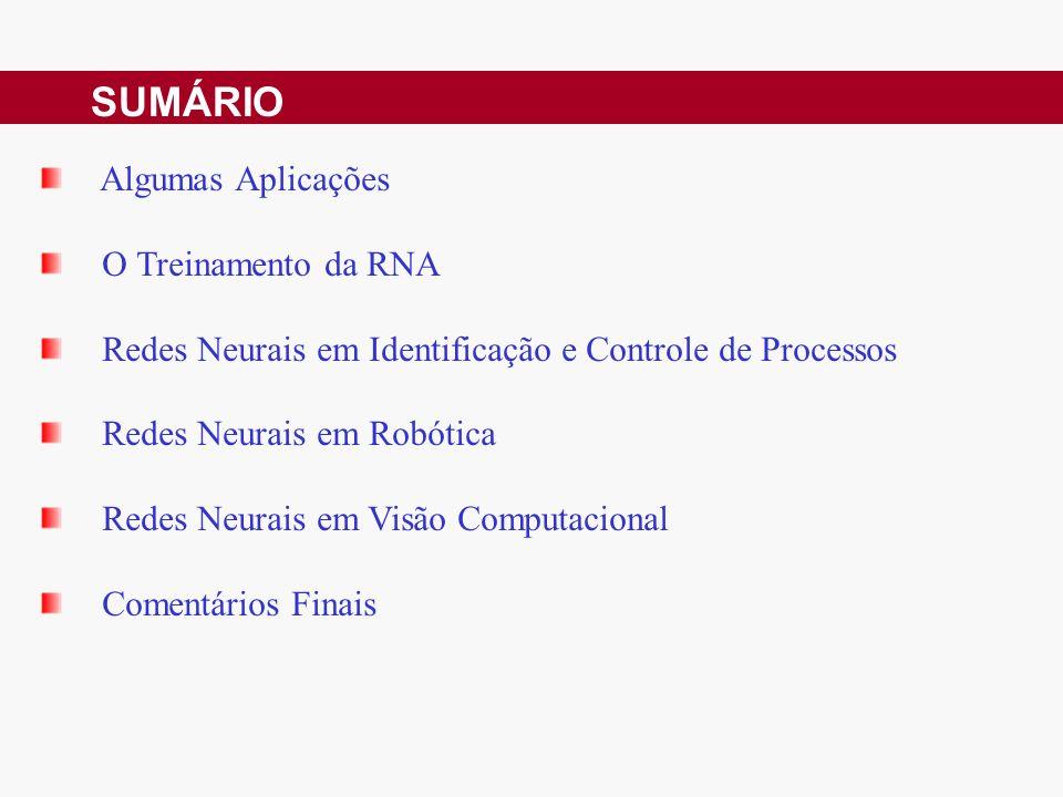 SUMÁRIO Algumas Aplicações O Treinamento da RNA Redes Neurais em Identificação e Controle de Processos Redes Neurais em Robótica Redes Neurais em Visão Computacional Comentários Finais
