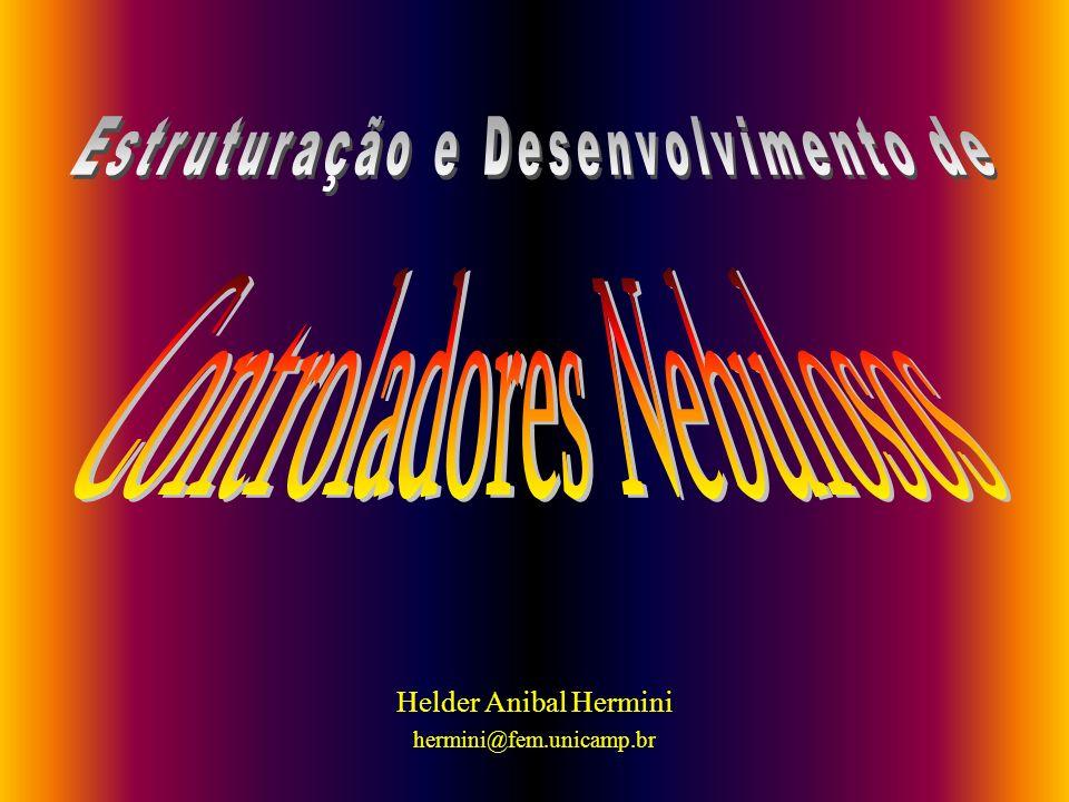 Helder Anibal Hermini hermini@fem.unicamp.br