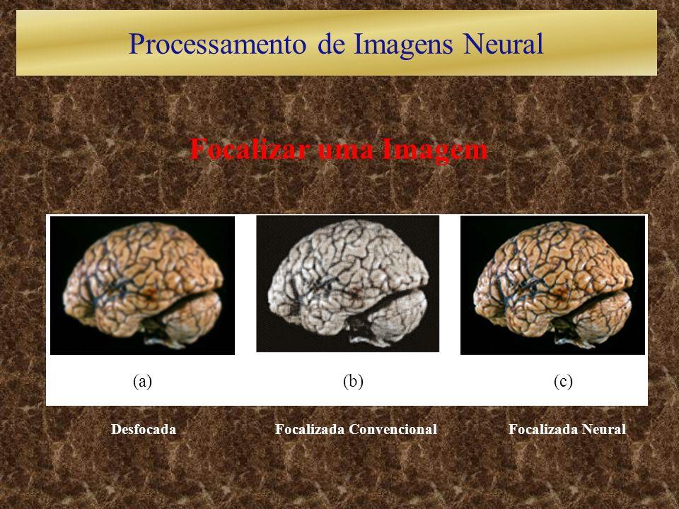 Focalizar uma Imagem Desfocada Focalizada Convencional Focalizada Neural (a)(b)(c) Processamento de Imagens Neural