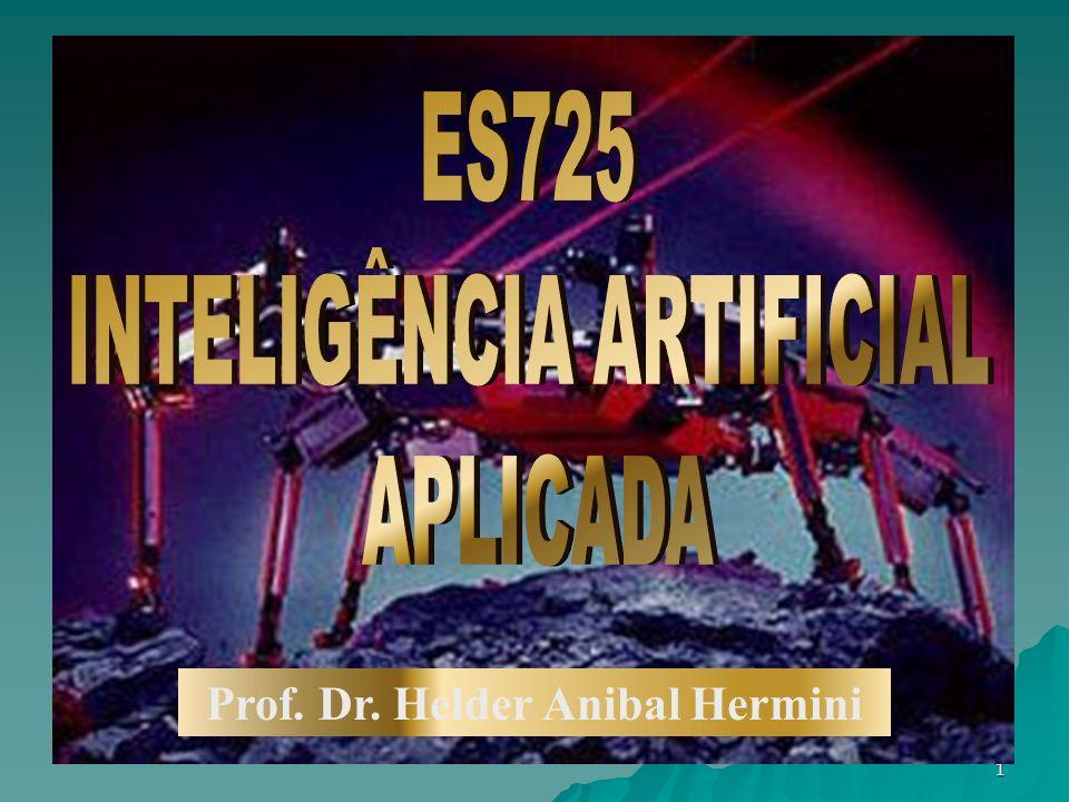1 Prof. Dr. Helder Anibal Hermini