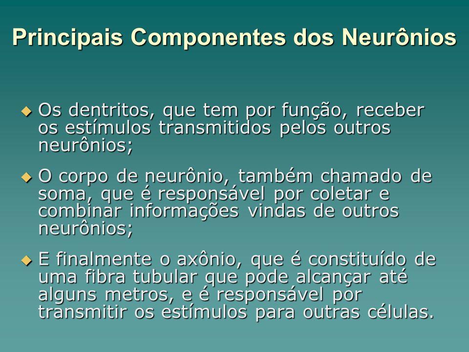 Os dentritos, que tem por função, receber os estímulos transmitidos pelos outros neurônios; Os dentritos, que tem por função, receber os estímulos tra