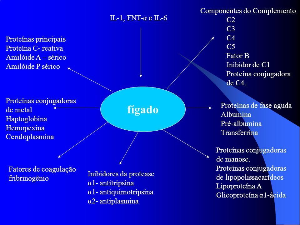 fígado IL-1, FNT-α e IL-6 Componentes do Complemento C2 C3 C4 C5 Fator B Inibidor de C1 Proteína conjugadora de C4. Proteínas de fase aguda Albumina P