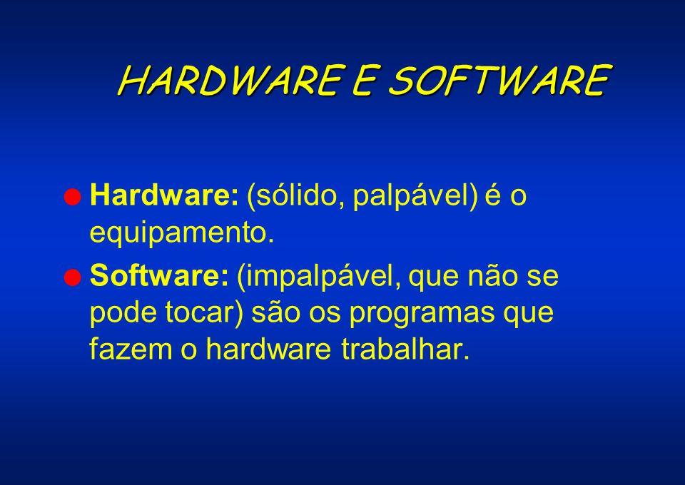 HARDWARE E SOFTWARE l Hardware: (sólido, palpável) é o equipamento. l Software: (impalpável, que não se pode tocar) são os programas que fazem o hardw