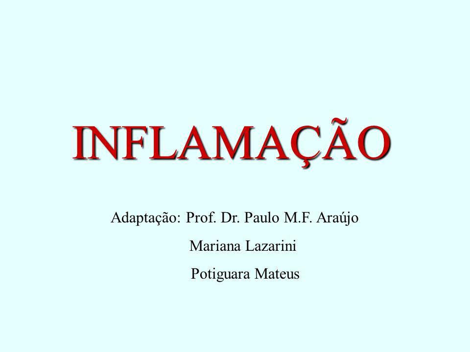 INFLAMAÇÃO Adaptação: Prof. Dr. Paulo M.F. Araújo Mariana Lazarini Potiguara Mateus