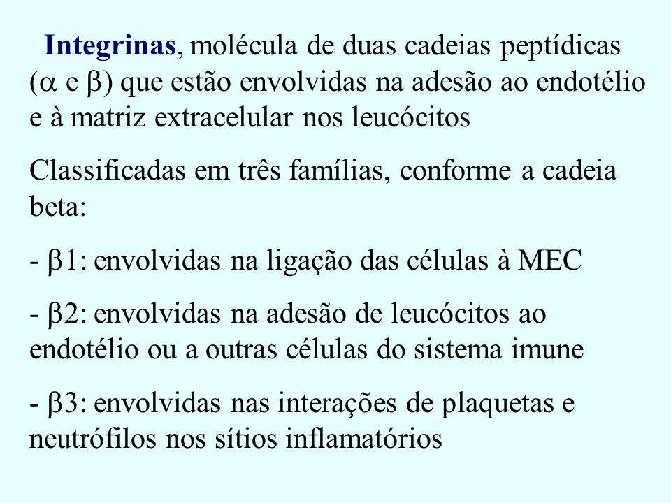 Integrinas, molécula de duas cadeias peptídicas ( e ) que estão envolvidas na adesão ao endotélio e à matriz extracelular nos leucócitos Classificadas