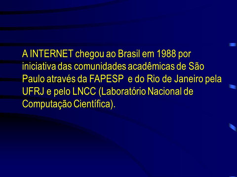 A INTERNET NO BRASIL