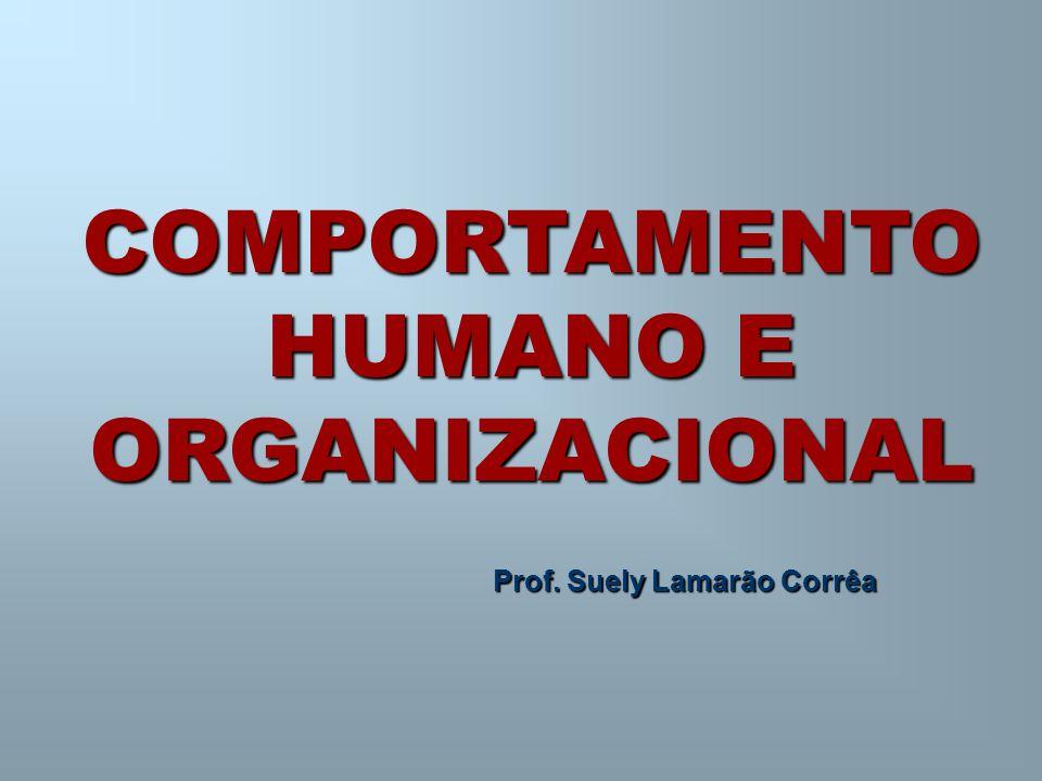 COMPORTAMENTO HUMANO E ORGANIZACIONAL Prof. Suely Lamarão Corrêa