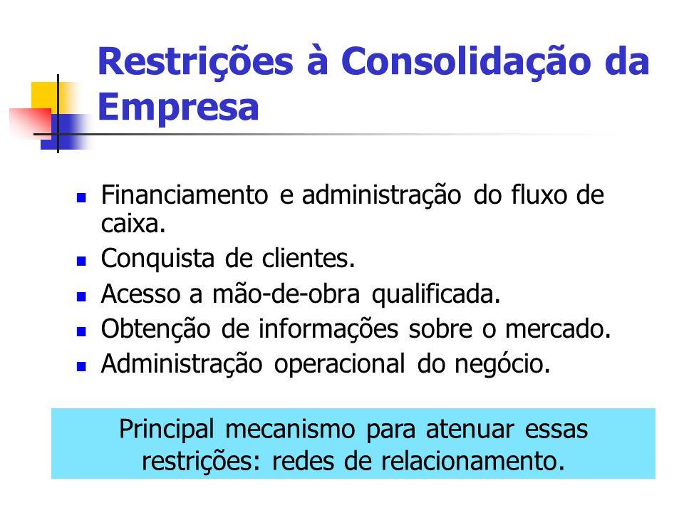 Restrições à Consolidação da Empresa Financiamento e administração do fluxo de caixa. Conquista de clientes. Acesso a mão-de-obra qualificada. Obtençã