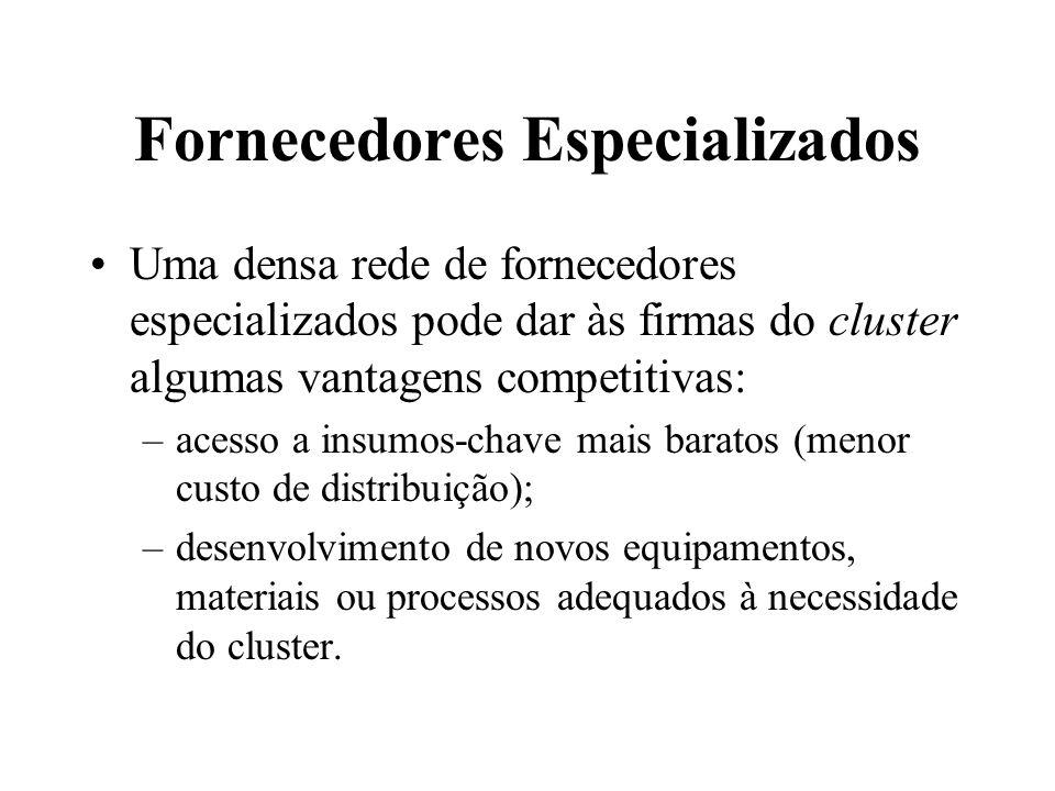 Fornecedores Especializados Uma densa rede de fornecedores especializados pode dar às firmas do cluster algumas vantagens competitivas: –acesso a insu