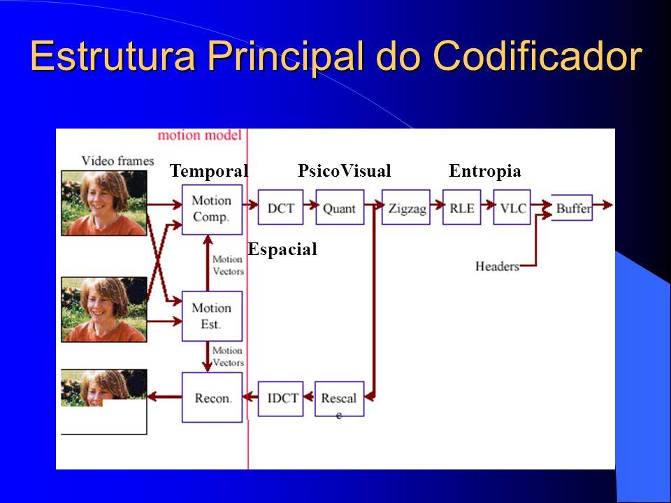 Estrutura Principal do Codificador Temporal Espacial PsicoVisualEntropia