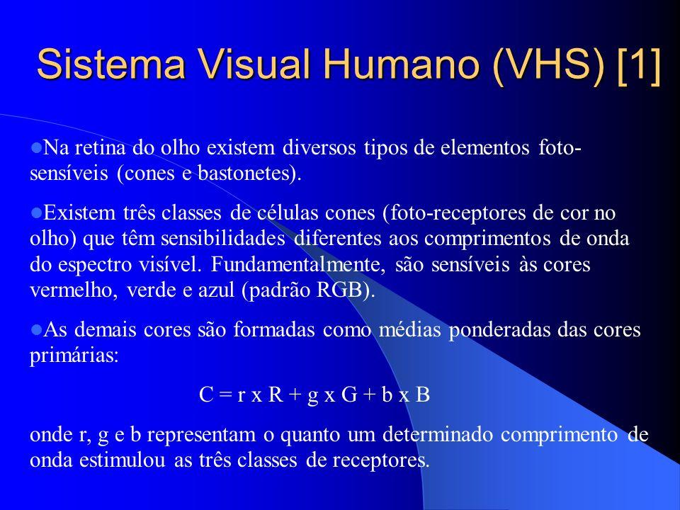 Sistema Visual Humano (VHS) [1] Na retina do olho existem diversos tipos de elementos foto- sensíveis (cones e bastonetes). Existem três classes de cé