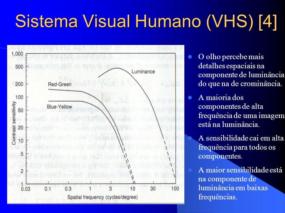 Sistema Visual Humano (VHS) [4] O olho percebe mais detalhes espaciais na componente de luminância do que na de crominância. A maioria dos componentes