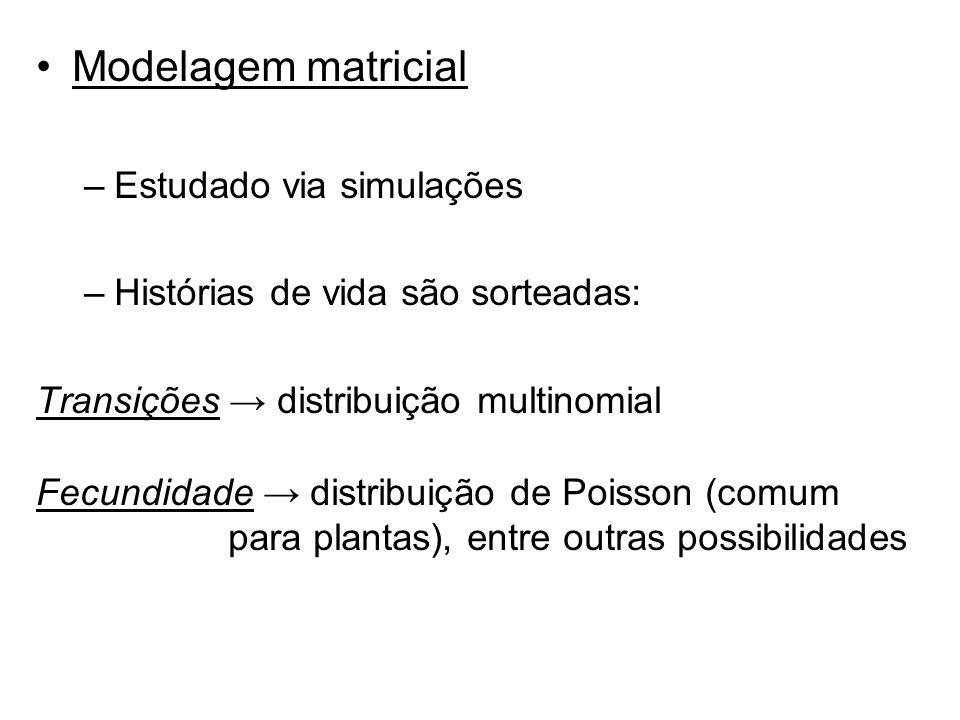 Modelagem matricial –Estudado via simulações –Histórias de vida são sorteadas: Transições distribuição multinomial Fecundidade distribuição de Poisson