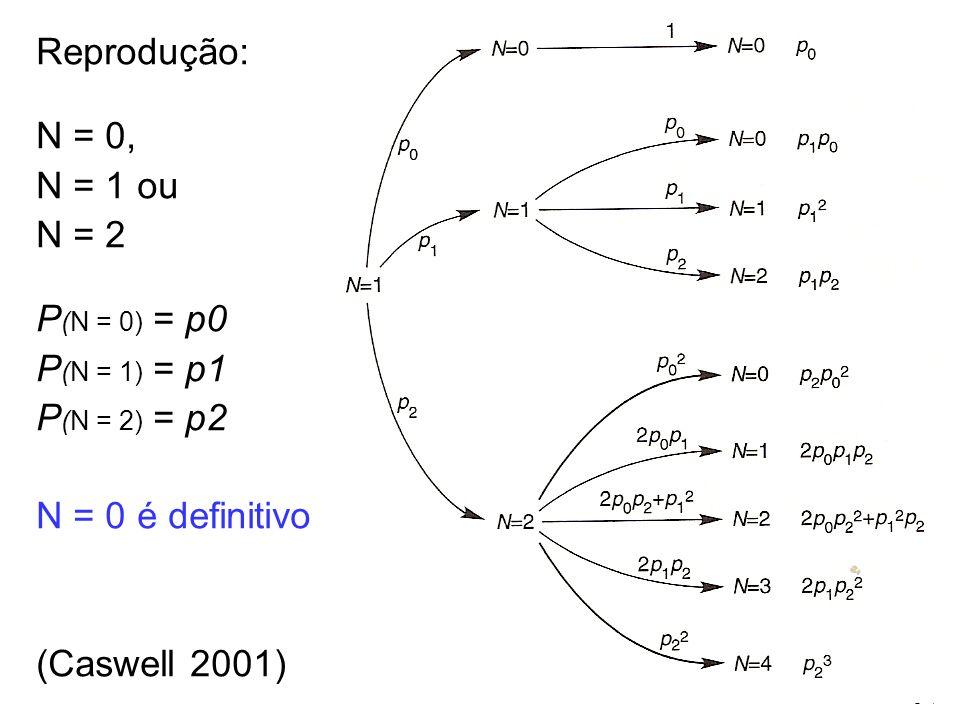 Reprodução: N = 0, N = 1 ou N = 2 P (N = 0) = p0 P (N = 1) = p1 P (N = 2) = p2 N = 0 é definitivo (Caswell 2001)