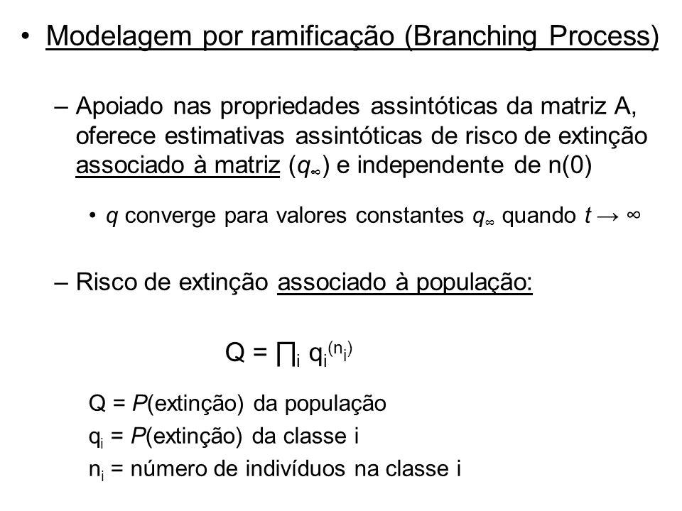 Modelagem por ramificação (Branching Process) –Apoiado nas propriedades assintóticas da matriz A, oferece estimativas assintóticas de risco de extinçã