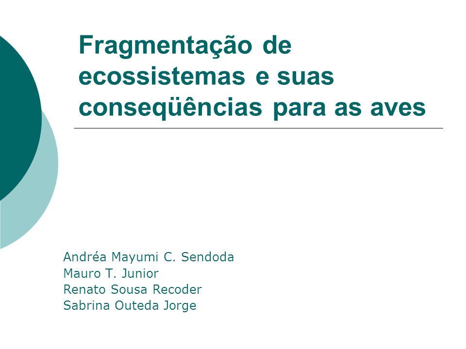 Fragmentação de ecossistemas e suas conseqüências para as aves Andréa Mayumi C. Sendoda Mauro T. Junior Renato Sousa Recoder Sabrina Outeda Jorge