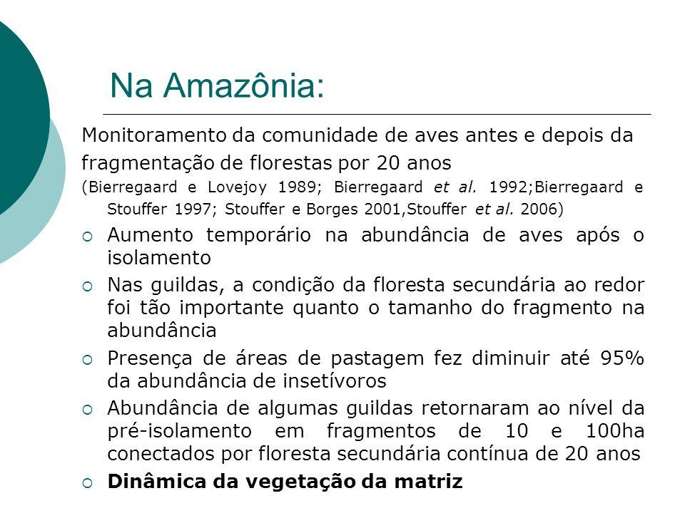 Na Amazônia: Monitoramento da comunidade de aves antes e depois da fragmentação de florestas por 20 anos (Bierregaard e Lovejoy 1989; Bierregaard et a