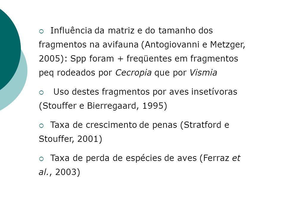 Influência da matriz e do tamanho dos fragmentos na avifauna (Antogiovanni e Metzger, 2005): Spp foram + freqüentes em fragmentos peq rodeados por Cec