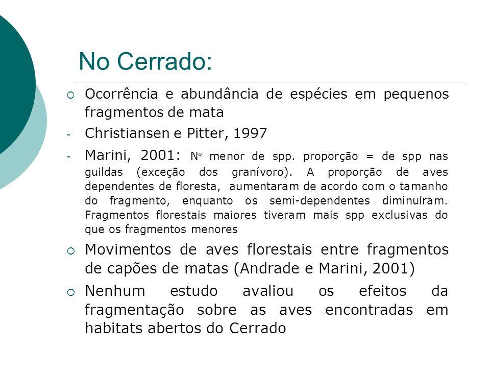 No Cerrado: Ocorrência e abundância de espécies em pequenos fragmentos de mata - Christiansen e Pitter, 1997 - Marini, 2001: N° menor de spp. proporçã